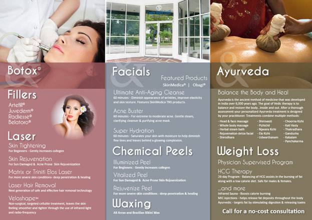 Aesthetics Brochure Inside